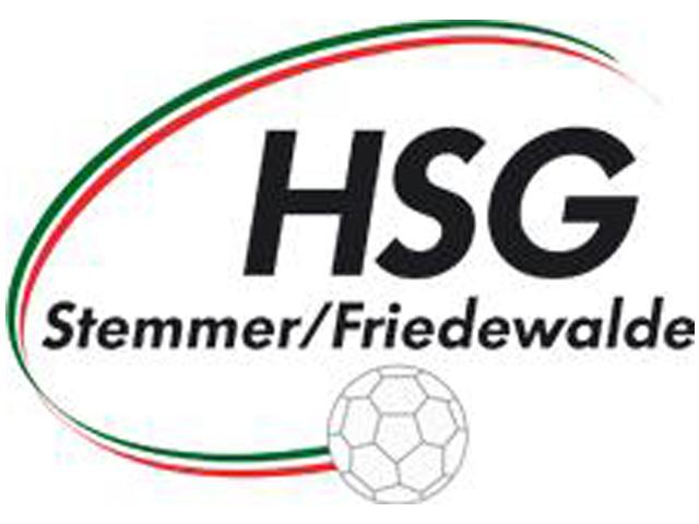 hsg-stemmer.png