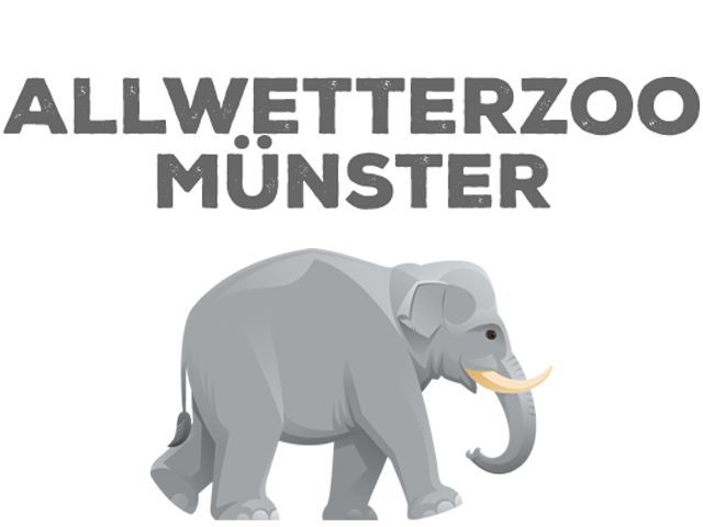 zoo_muenster.png